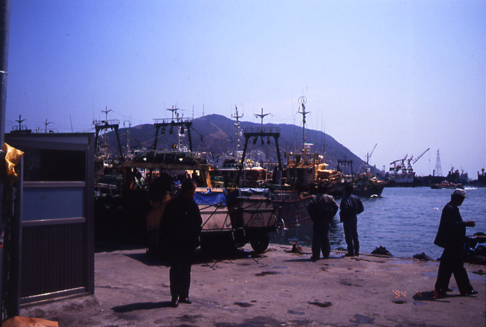 19940407-10.jpg