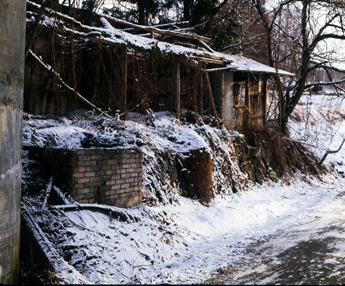 1995-02.jpg