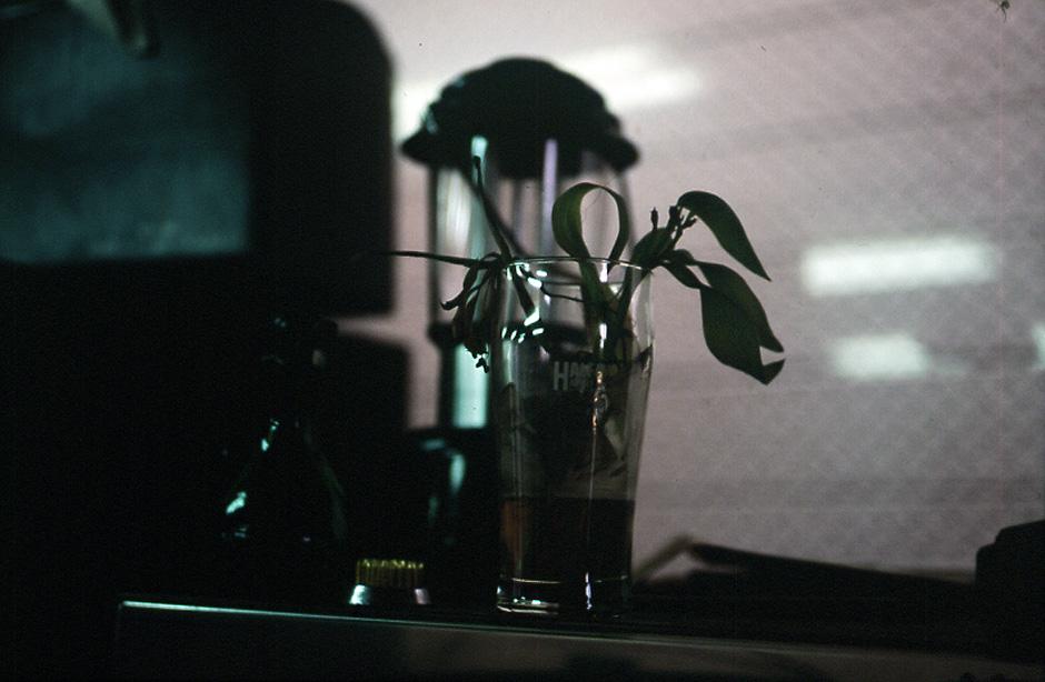 1996-07-03.jpg